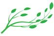 branch of tree vector illustration