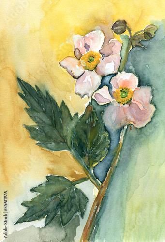 Fotobehang Zwavel geel Anemone
