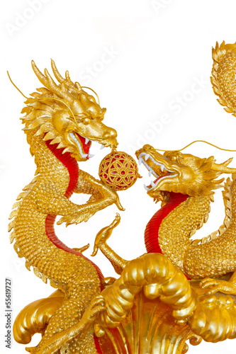 Photographie  Two Golden Chinese Dragon