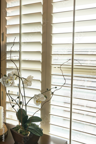Photo  Wood frame plantation style shutters