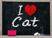 I Love My Cat Written With Cha...