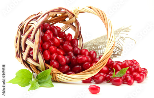 Valokuva  Fresh cornel berries in wicker basket, isolated on white