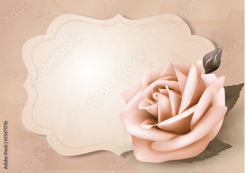 Foto op Plexiglas Retro Retro greeting card with pink rose. Vector illustration.
