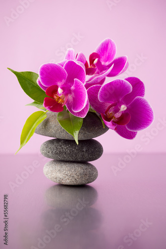 Foto-Stoff - Spa stones. (von gitusik)