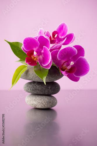 Plissee mit Motiv - Spa stones.