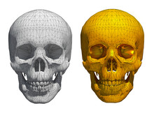3d White And Golden Skull Wire...