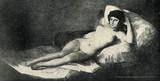 La maja desnuda Francisco Goya - 55749380