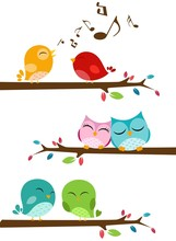 Birds Singing On The Branch