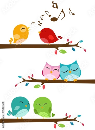 ptaki-spiewaja-na-galezi