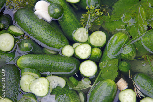 Photo pickling cucumbers