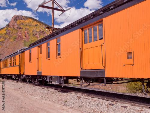 Fotografie, Obraz  Narrow Gauge Train