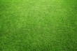 canvas print picture - Perfect green grass at the sport field or back yard
