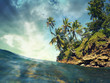 Coconut trees over the sea