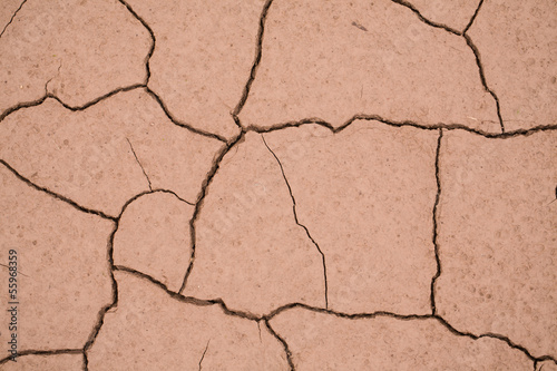 Dried mud that has cracked into a interesting pattern. Canvas Print