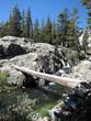 Mountain Creek in California, USA.