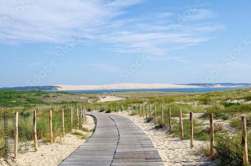 Foto  La dune du Pilat en Gironde. Protection du littoral