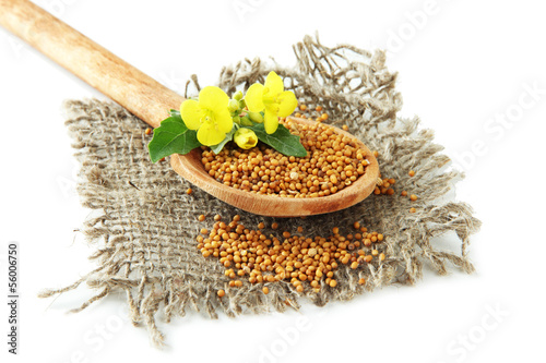 Tuinposter Kruiden 2 Mustard seeds in wooden spoon with mustard flower isolated