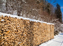 Firewood Stacked In Winter.  W...