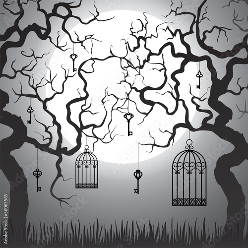 Acrylic Prints Birds in cages Enchanted forest
