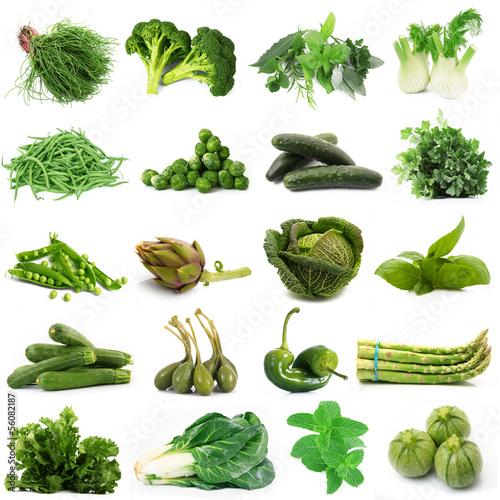 Láminas  verdura verde collage