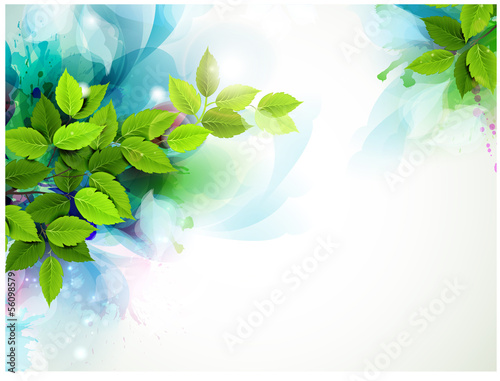 Fotografía  banner with fresh green leaves