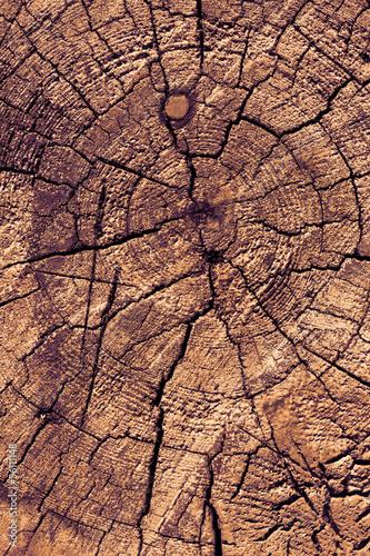 starej-drewnianej-tekstury-przekroju-poprzecznego-antykwarski-tlo-lub-tekstura-br