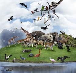 Panel Szklany Podświetlane Zwierzęta A Collage Of Wild Animals And Birds