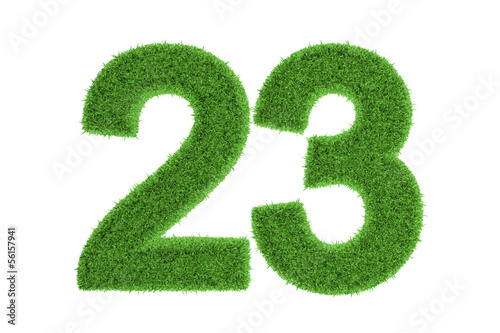 Papel de parede  Number 23 with a green grass texture