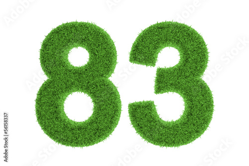 Tela  Number 83 with a green grass texture