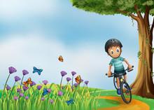 A Biker Biking At The Hilltop With A Garden
