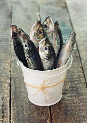 Valokuva  Raw fish (scad) in bucket