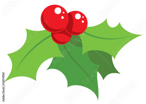 Fotografie, Obraz Cartoon simple mistletoe decorative ornament