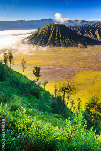 Foto op Plexiglas Indonesië Bromo vocalno at sunrise, East Java, , Indonesia