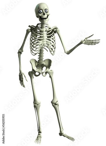 Keuken foto achterwand Sweet Monsters 3d cartoon skeleton