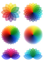 Abstract Color Flowers, Vector Set
