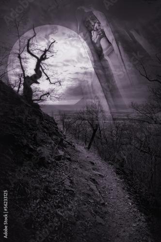 Fotobehang Volle maan haunted pathway