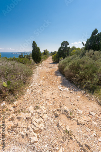 Stone footpath in the mountains leading to down Plakat