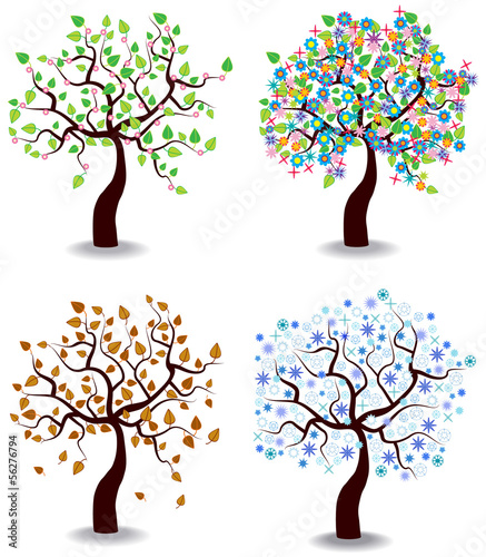 Fotografía  color vector illustration of four seasons trees