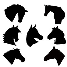 Horse Heads Silhouettes