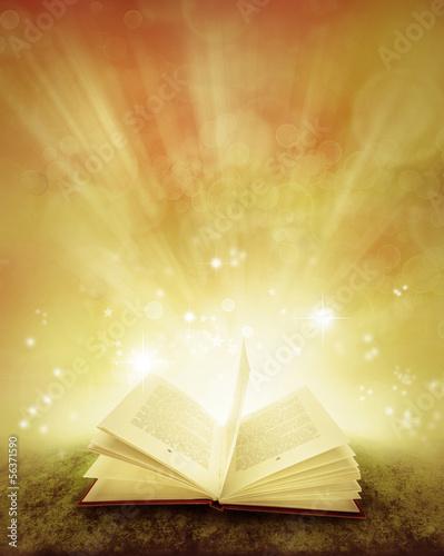 Book - 56371590