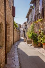 Fototapeta Uliczki Strada con fiori, Assisi