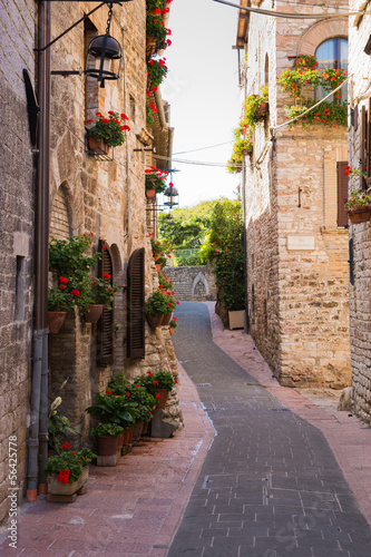 sredniowieczna-droga-z-kwiatami-assisi