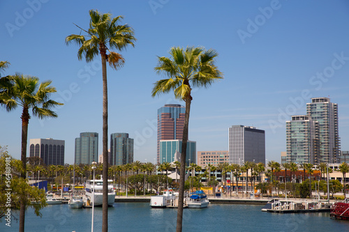 Fényképezés  Long Beach California skyline from palm trees of port