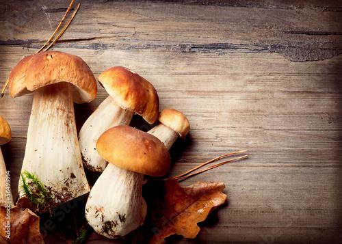 Fototapeta Mushroom Boletus over Wooden Background. Autumn Cep Mushrooms obraz