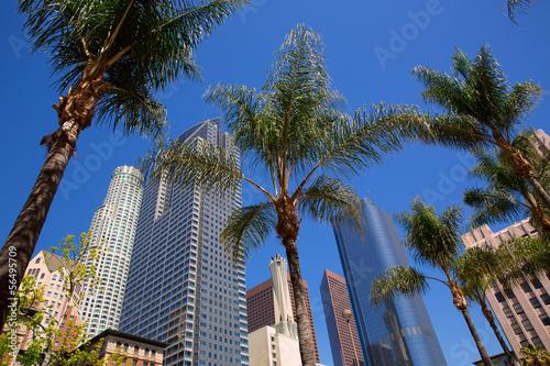 Fotografía  LA Downtown Los Angeles Pershing Square palm tress