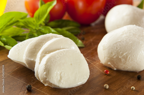 Fotografie, Obraz  Homemade Organic Mozzarella Cheese