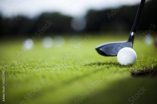 Papiers peints Golf Golf ball on green meadow, driver