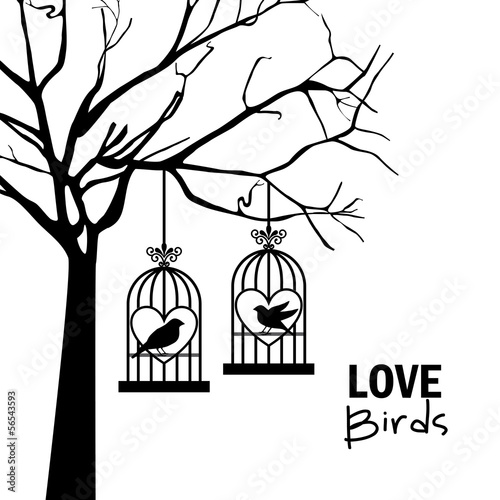 Poster Birds in cages love