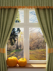 FototapetaWindow with pumpkins a beautiful view
