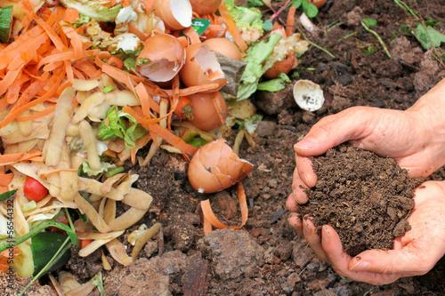 Photographie  Kompostierte Erde, Komposthaufen, compost